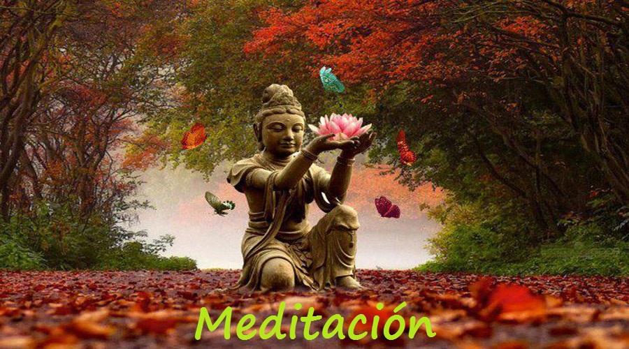 meditacion[1]